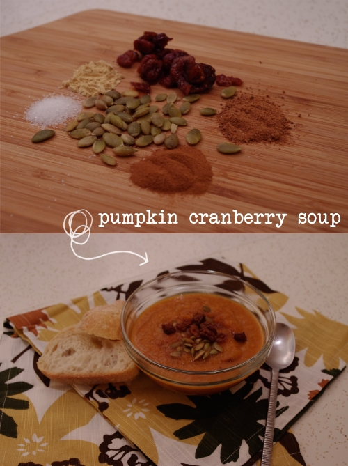 pumpkingcranberrysoup
