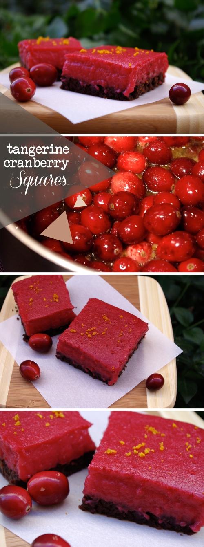 tangerine cranberry squares