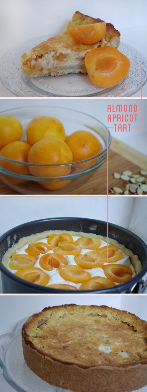 Almond Apricot Tart