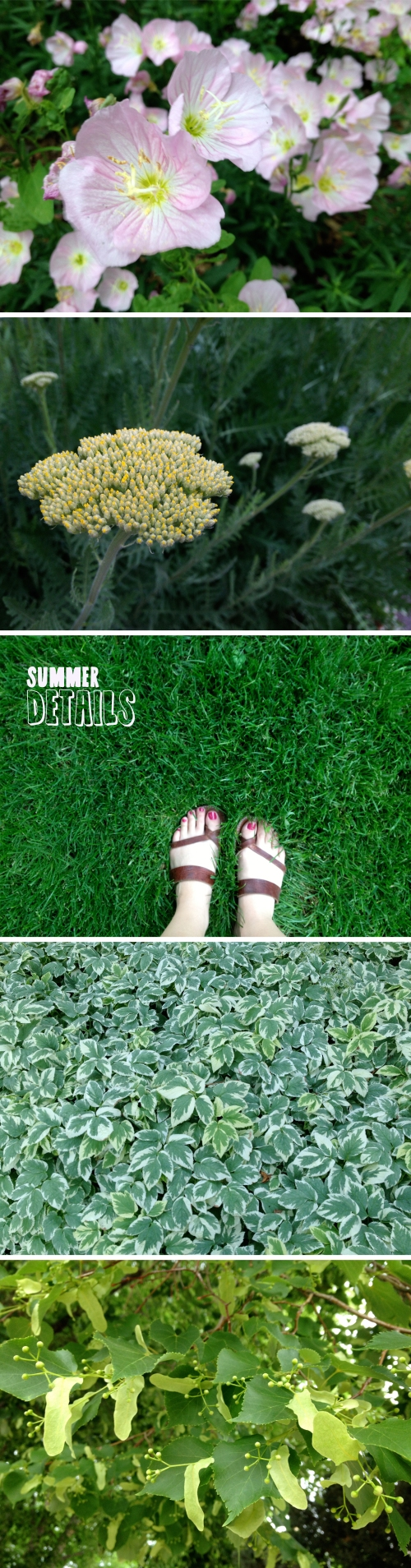 Summer Details