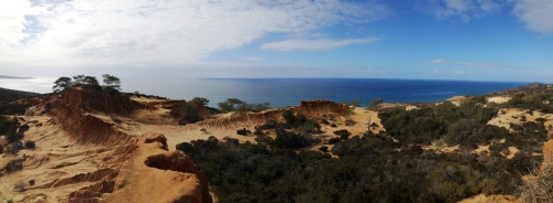 torrey pines coast
