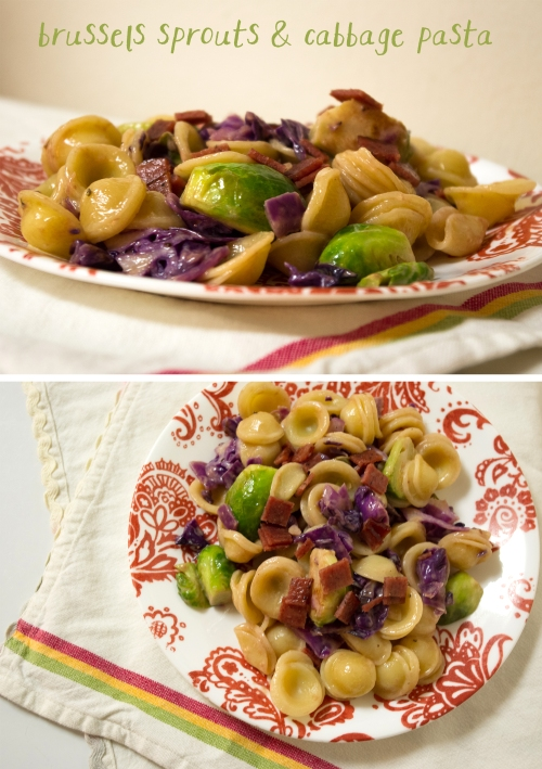 Brussels sprouts cabbage pasta