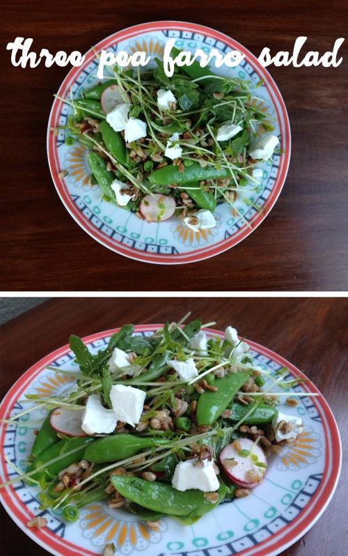 three pea farro salad